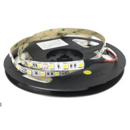 TIRA LED RGB 60 LED/M/14.4W IP20 SMD 5050